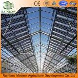 Mulit-Span Buen Precio de efecto invernadero de Energía Solar Fotovoltaica