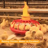 Автоматические клетки батареи птицефермы для растущий цыпленка бройлера