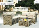 Mobilia di vimini del rattan della mobilia del patio del sofà del rattan della mobilia della ganascia della Tabella della casa della mobilia esterna di vimini del giardino