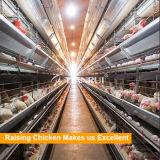 Автоматическая цыплятина наслаивает клетки батареи