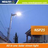 25W 2016 nuovo disegno tutto in un indicatore luminoso di via solare con il buon prezzo