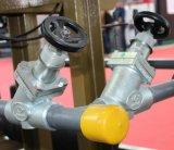 Válvula de retención de amoníaco