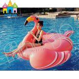 De Opblaasbare Producten die van het water Vlotter van de Pool van de Flamingo van de Ring de Drijvende zwemmen
