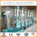 100t/D는 옥수수 맷돌로 가는 기계장치 또는 옥수수 제분기를 완료한다