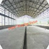 Casa prefabricada del tonel de pollo de la estructura del marco de acero del bajo costo en granjas avícolas