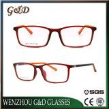 Het recentste Populaire Oogglas Eyewear van het Frame van de Glazen van het Ontwerp van de Manier Tr90 Optische
