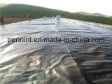 материал HDPE 0.2mm-3.0mm и тип вкладыш Geomembranes пруда Geomembrane HDPE