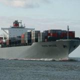 Товароотправитель перевозки перевозкы груза моря/океана от Китая к Хьюстон, Tx