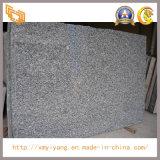 Grote Plak van het Graniet van de golf de Witte voor Countertop/de Bovenkant van de Ijdelheid (YY - GS005)