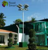 5000lm 조정가능한 태양 전지판을%s 가진 통합 LED 태양 가로등