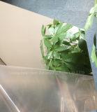 Anti-Rasguñar la hoja de acrílico del acrílico del espejo de la pared de las hojas del espejo del oro