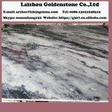 Мрамор стены Polished мраморный плиток пасмурный серый мраморный