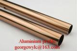 L'extrusion en aluminium profile le profil en aluminium avec la couleur de Champagne pour le guichet en aluminium dans Shandong Chine