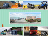 Fabbrica Supplier Top Trust Forklift Tyres (28*9-15) con Cheap Prices