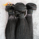 Cabelo reto da alta qualidade de Tanglefree do cabelo do Virgin do Malaysian de 100%