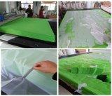 Máquina de estaca do laser e máquina de Engravine (alimentação automática)