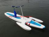 Utilisation de bicyclette de l'eau en eau de mer (SG-DC01)