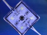 가장 새로운 도매 방수 LED 모듈 3chips/DC12V 2835 LED 모듈