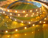 Nonwaterproof 3528 가동 가능한 LED 지구 빛