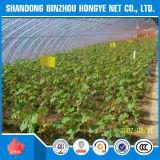 Долговечный Sun Shade Net/парниковых Sun Shade Net