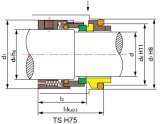 H7n, H75 mechanische Dichtung, Pumpen-Dichtung, Burgmann, Schatten, Roten, Vulcan
