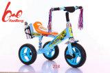 빛과 음악 또는 빛 바퀴를 가진 2017baby 세발자전거