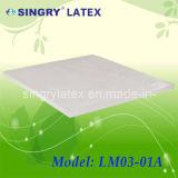 Colchón de látex de molde