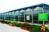 De Serre van het Glas van de Prijs van de Fabriek van China voor het Groeien van de Aardappel