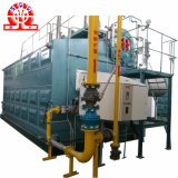 Caldeira de Szs do gás Energy-Saving profissional