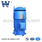 깊은 우물 펌프를 위한 Vhs (IP23) 시리즈 수직 비 샤프트 비동시성 모터