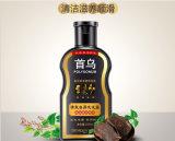 Champú de la caspa del Polygonum herbario no alimentando ningún champú del cuidado de pelo del petróleo de silicón