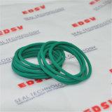 Grüner HNBR 70 Ring-Gummidichtung/Gummiring
