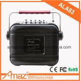 6.5inch 중국 Bluetooth를 가진 고명한 상표 Amaz 스피커