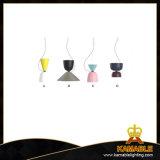 Домашняя оформление алюминия подвесной светильник (9366)