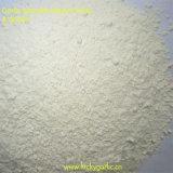 Poudre Powder-Garlic végétale
