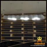 Новый стиль АБС, белого цвета из алюминиевого сплава висящих подвесной светильник (2242S-L18-9)
