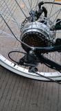 bici elettrica poco costosa di 36V 10ah da vendere