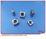 Noix 316 DIN557 M5 carrée de l'acier inoxydable 304