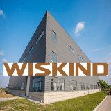 Moderner Entwurfs-Licht-Stahlgebäude
