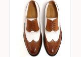 子牛の本革のフォーマルドレスの実業家の靴