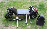 [500و] [إلكتريك موتور سكوتر] مع 3 عجلات