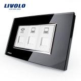 Plot de luxe d'ordinateur de téléphone de mur de constructeur de Livolo Chine (VL-C392TCC-81/82 (Tel/COM/COM))