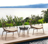 La présidence et le Tableau extérieurs de Bistros de café de jardin de meubles ont placé employant la corde avec l'aluminium