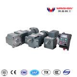 Wanshsin 6W ~250W 전기 유도 AC 기어 모터