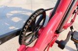 20inch, das fettes Fahrrad des Gummireifen-500W E faltet