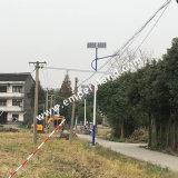 8m 60W Ce&FCC&RoHS maakten een lijst van ZonneStraatlantaarn