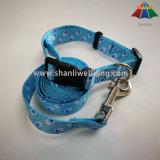 Collare di cane di nylon stampato sublimazione di formato di m., collare dell'animale domestico