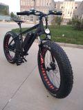 """48V 750W 26 """" X 4.0 넓은 타이어 눈 바닷가 전기 자전거"""