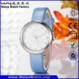 Zollamt-beiläufige Fabrik-Quarz-Dame-Armbanduhr (Wy-060A)