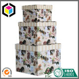 El rectángulo de regalo del papel de la cartulina de la impresión de color fijó para el almacenaje